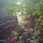 Ecoparque La Romera