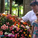 Orquídeas en el Jardín Botánico